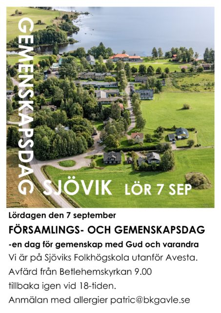 Gemenskapsdag Sjövik